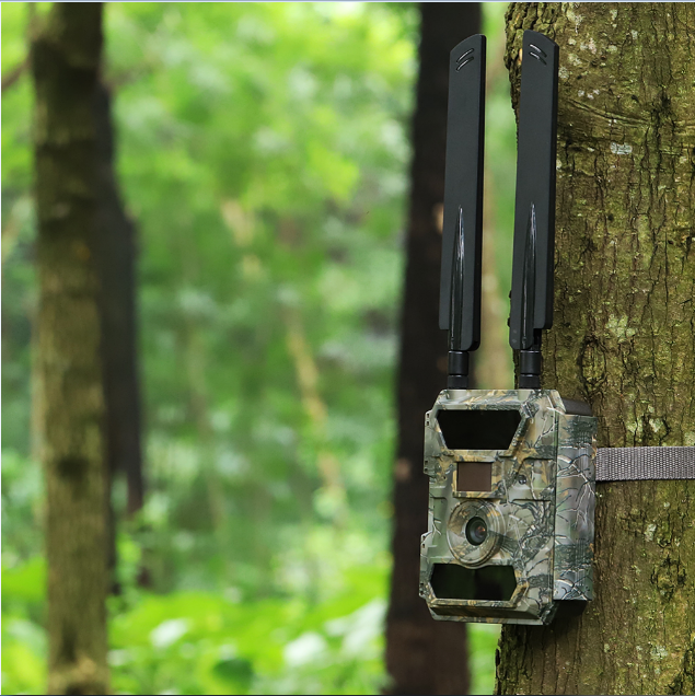 4G LTE hunting trail camera