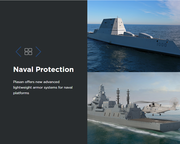 Naval Protection
